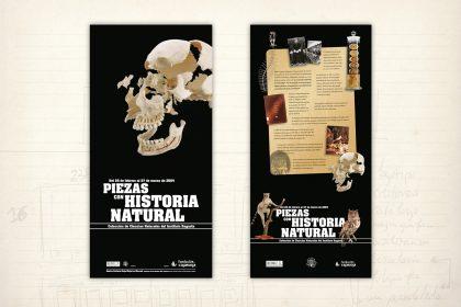 Imagen gráfica. Exposición Piezas con Historia Natural. Fundación Caja Rioja